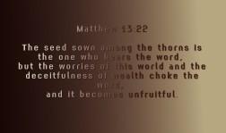 Matthew 13-22